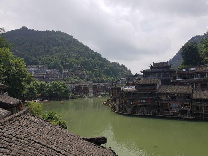 Feng huang
