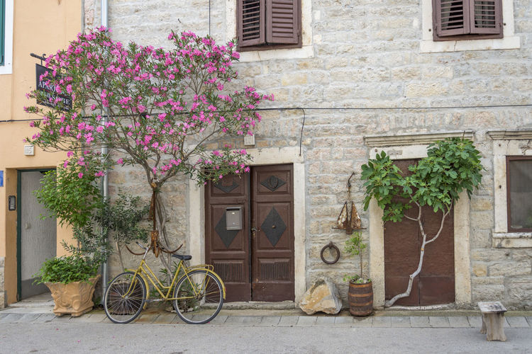 Street life Croatia Life Mediterranean  Skradin Architecture Bicycle Bouquet Building Building Exterior Built Structure City Dalmatia Dalmatian Street Day Flower Flowering Plant Growth House Land Vehicle Mode Of Transportation Nature No People Outdoors Plant Plant In Stone Purple Residential District Transportation Tree In Stone Wheel Window First Eyeem Photo