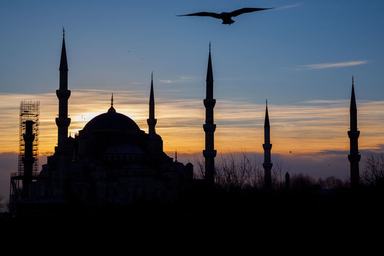Mosque Minaret Sunset Seagull Istanbul Sky Architecture Building Exterior Built Structure Silhouette Place Of Worship Belief Religion Building Travel Destinations No People Dome Spirituality Nature Bird Tourism Flying Outdoors Spire