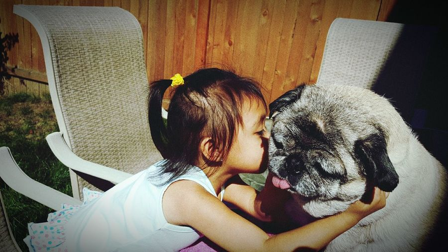 What I Value Daughter Pugs Pugsandbabies MyLoves