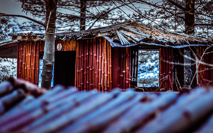 Haunted hut Architecture Bamboo Bamboo - Plant Bhurban Branch Built Structure Close-up Day Destination EyeEm Best Shots Haunted Hut Nature No People Outdoors Pakistan Roof Selective Focus Travel Travel Destinations Traveling Tree Wood