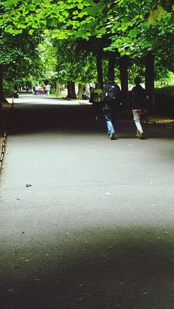 Dublin St. Stephens Green People Watching Parklife Park