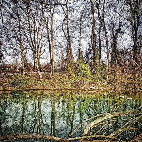 Reflecting on this lovely Easter Sunday. Water Reflection Nature Photooftheday