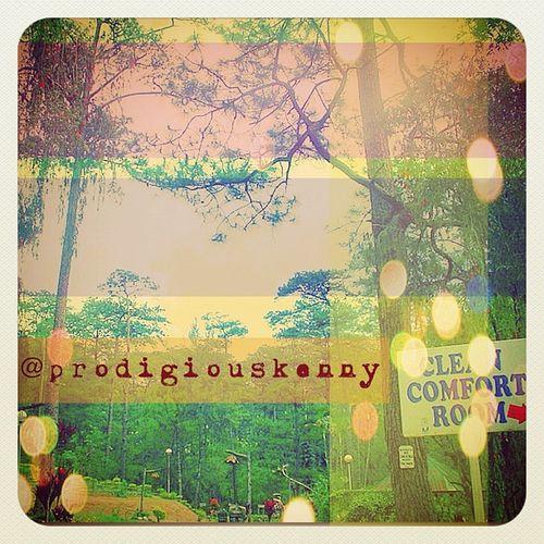 Baguio City Gang_family Gf_daily Gf_daily_gogreen_002 Thechallengigers igersmanila i_promote photooftheday bestoftheday jj gmy jj_forum iphoneography iphonesia gang_fam iphoneonly 9pmhabit instagramhub statigram captionactions instagood igersawards instalike