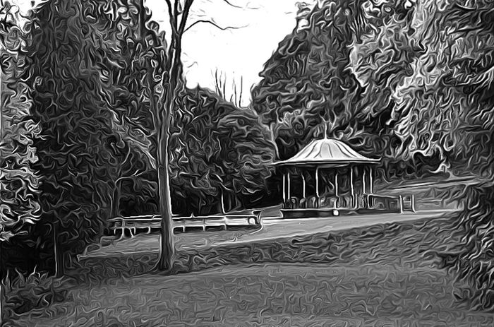Edited using the Android Lithic app! Lithic B&w Nature B&W Collection Surreal