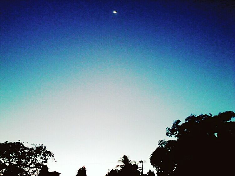 Blue Sky Moon Bluesky OutOfTheBlue Outoftown Unexpected Pictures Otwhome Trees And Sky Randimography