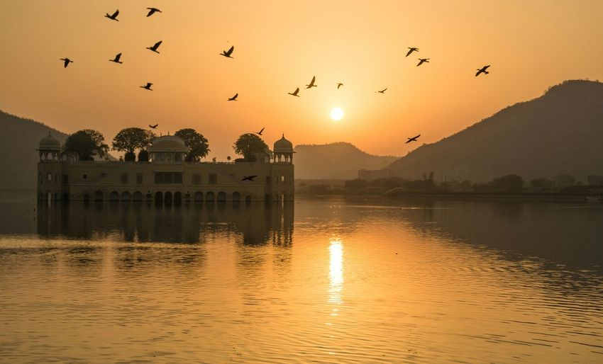 Jal Mahal Palace during Sunrise Jal Mahal Jaipur India Rajasthan Lake Sunrise Ancient Reflection Flock Of Birds Birds Feel The Journey Color Of Life Hidden Gems  Color Palette Colour Of Life