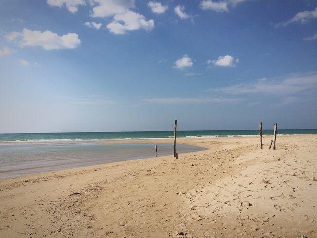 Sea Paradise Beach Sea