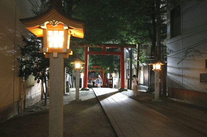 Illuminated Torii Gate Tori Torii Gates Toriigates Toriigate Asian Architecture Shrine Shrine Of Japan Shrines & Temples Japan Photos Nippon Photography Tokyo,Japan Japan Photography Tokyo, Japan Tokyo Japan Tokyo Japan Tokyo Photography 東京,晴空塔 Nippon 日本国 Architecture Night Street Light