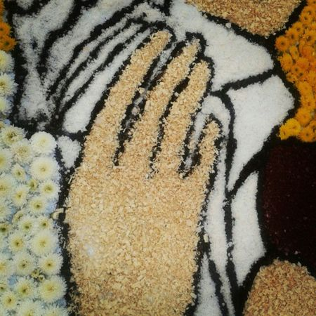 Full Frame No People Textured  High Angle View Close-up Backgrounds Day Outdoors Nature Infiorata Italy Tarquinia