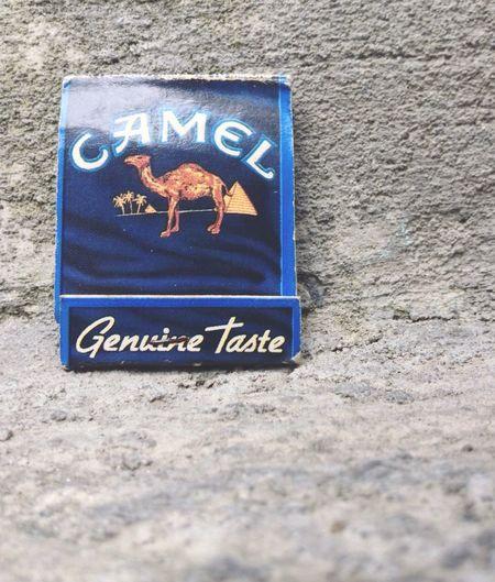 FIRE Fire Camello Camel