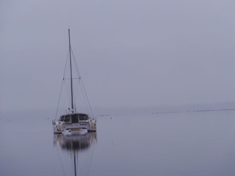 Peaceful, quiet, misty morning Boat Mist Misty Morning Nautical Vessel No People Reflection Sailboat Tasmania Tranquility Transportation Water
