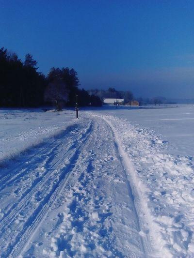 Zima2016 Perfectpho Polska Poland Wintertime First Eyeem Photo Beautiful Nature