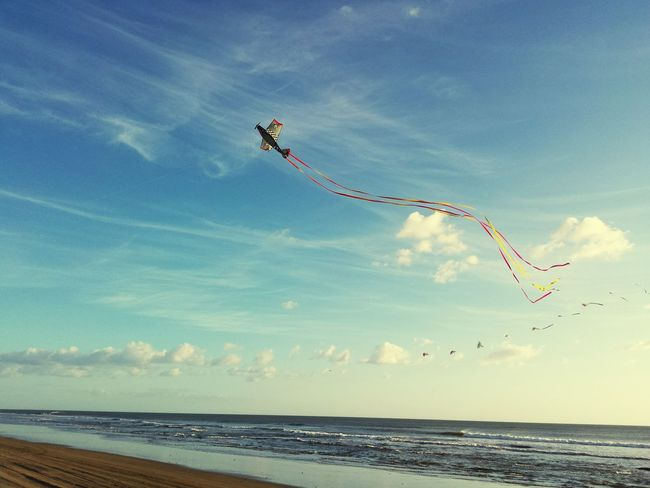 Ending the year with kites