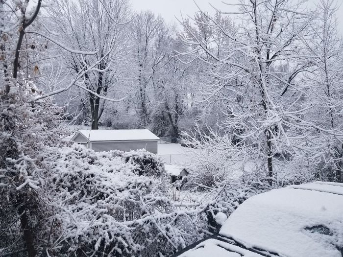 Finally a little snow Streamzoofamily #streamzoo #NoFilter Snow Winter Cold Temperature Day Outdoors No People Full Frame