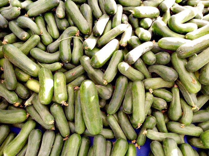 salatalık Vegetable Food Full Frame Backgrounds Large Group Of Objects Close-up Green Color Food And Drink Freshness Healthy Eating Still Life Green Pea Abundance Repetition Ingredient Group Of Objects Green Heap