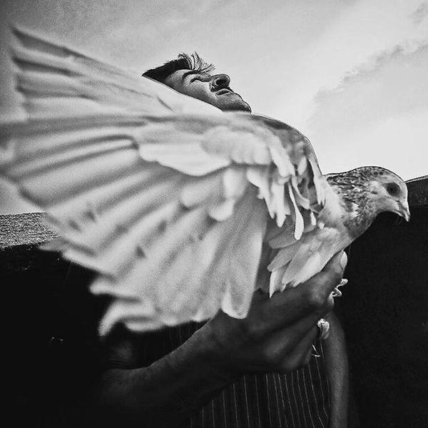 Blackandwhite Bnw_eye Bnw_life Bnw Bw_batavia Bw_lover Bw_photooftheday Dailypic Daylife Documentary Photowonderful_bw Worldbestshot Photojournalism Bird Sky Ig_contrast_bnw Instamessage Blacklivesmatter Shootermag Contest
