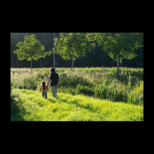 Dans la Lumière de la Touraine Green Two EyeEm Nature Lover EyeEm Best Shots RePicture Giving