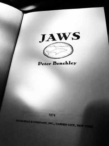 Jaws Reading A Book Rainy Day Book Reading 1974 Novel Jaws Western Script Communication Indoors  Day