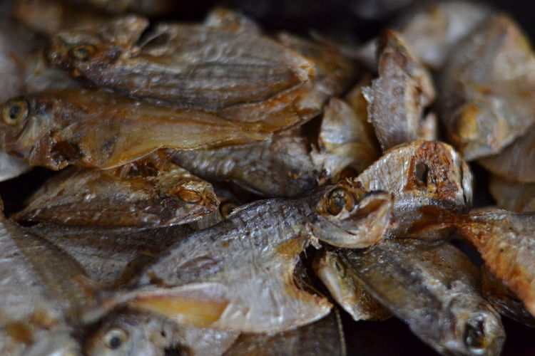 dried EyeEm EyeemPhilippines Philippines EyeEmNewHere Getty Gettyimages Images Sale Forsale Sellingphotos Photos Sell Selloneyeem Black-and-white No People Seafood Market Animal Wildlife Close-up Nature Sea Life UnderSea Outdoors Day Animal Themes Food Stories