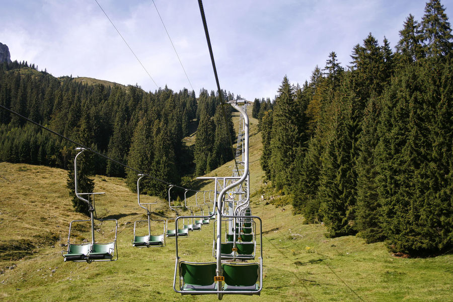 Beauty In Nature Chairlift Day Grass Green Color Growth Lush - Description Nature No People Outdoors Ski Resort  Sky Tranquil Scene Tranquility Tree Österreich