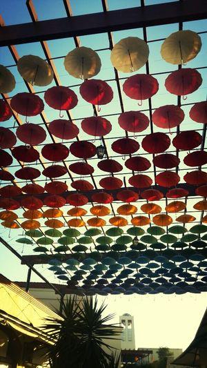Travelling Relaxing Umbrella Hello World