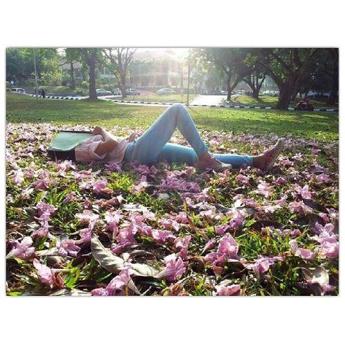 Be cool. Stop sleeping. Start studying for AKW 104. Usm Studying Midtermtest Hitzselfie