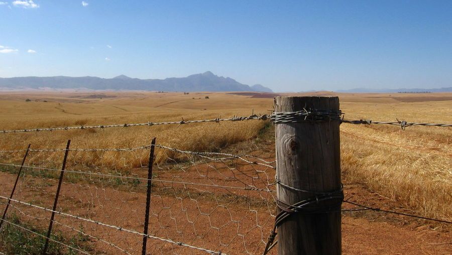 Blue BobWire Clear Sky Day Fence Field Horizon Over Land Landscape Mountain Mountain Range Nature No People Outdoors Protection Rural Scene Safety Scenics Security Sky South Africa Swartland Tranquil Scene Tranquility