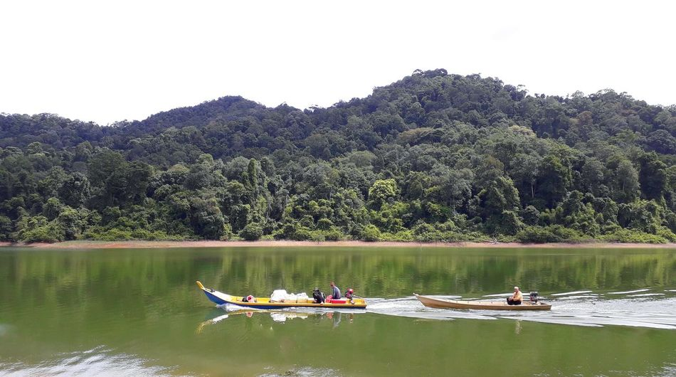 Fisherman boats Fisherman Boat Fishermanboats Lake Mountains Nelayan Tree Water Nautical Vessel Rowing Oar Forest Lake Mountain Men Sitting Paddleboarding Water Sport Rowboat Floating On Water Paddling