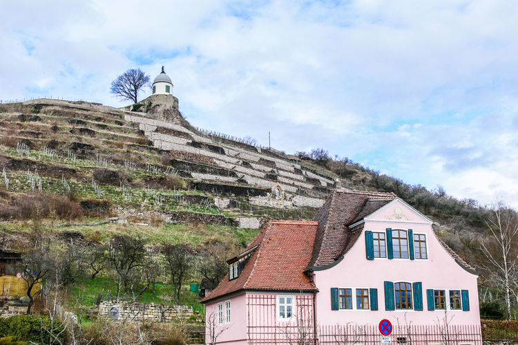 Wine Region Radebeul in Saxony on the Elbe River Agriculture Steep Hill Architecture Building Exterior Built Structure Cloud - Sky House Nature Outdoors Sky Wine Yard