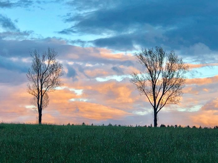 Cloud - Sky Sky Plant Tree Beauty In Nature Tranquility Tranquil Scene Nature No People Outdoors Land Field