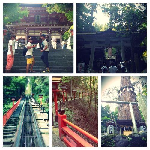 Japan Taking Photos Enjoying Life Kyoto