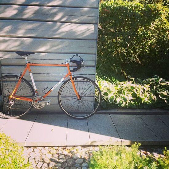 End of tour de Växjö, time for coffie... Solobikeparking Luggedsteel Växjö  Shimano Crescent Cx Oldschool Fahrrad Bicycle Velo Nature Bikelife Downtubegearshifter Orange Freeworld HASHTAG