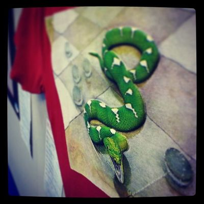 FESPA T-SHIRT with 3D snake