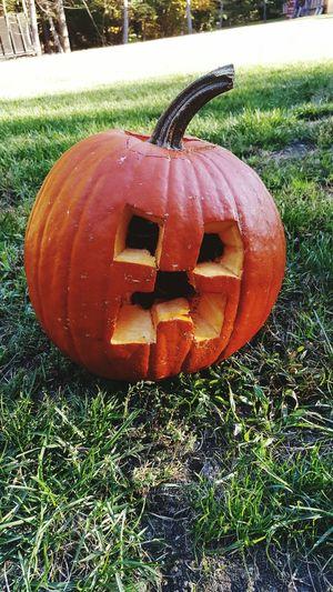 Happy halloween! Halloween