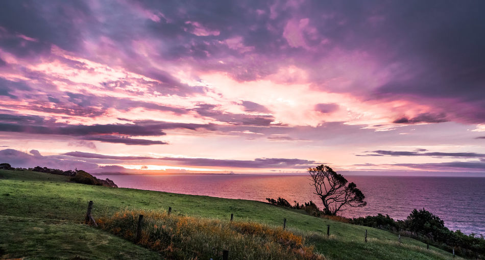 Spectacular and colourful sunset at Waiiti, New Zealand. Sunset Sky Sunset Sky And Clouds Purple Sky Pink Sky Pink Sky At Sunset Dramatic Sky Dramatic Clouds Sony A7RII New Zealand New Zealand Scenery New Zealand Landscape New Zealand Beauty New Zealand Natural New Plymouth, NZ Nature_collection Nature Photography EyeEm Nature Collection Tasman Sea Lone Tree Sky Cloud - Sky Beauty In Nature Scenics - Nature Sunset Tranquility Water Tranquil Scene Sea Land Horizon Plant Horizon Over Water Grass Nature Idyllic Field No People Non-urban Scene Outdoors Travel Travel Destinations EyeEm Travel Photography Eyeem Travel Travel Destination Travel And Tourism