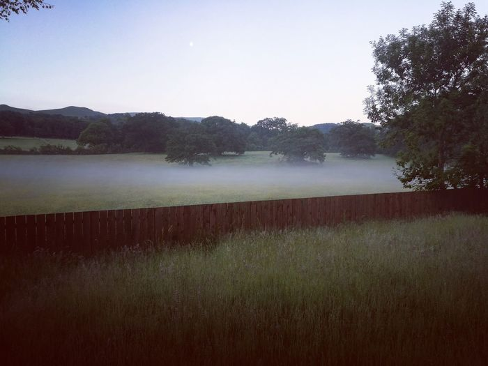 misty morning Water Irrigation Equipment Agriculture Spraying Lake Foggy Dew