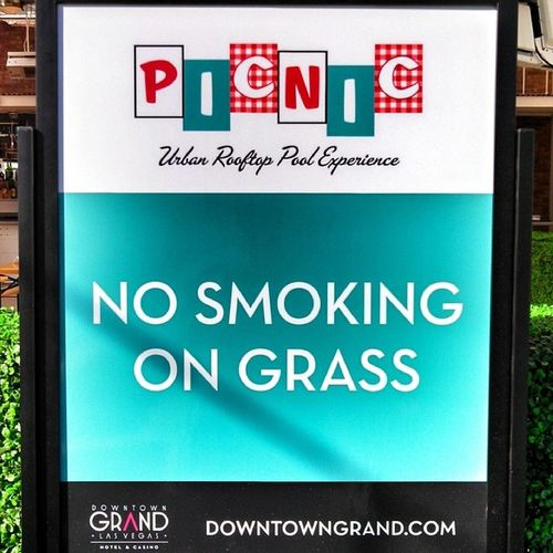 What kind of picnic is this? Nosmokingongrass Vegas