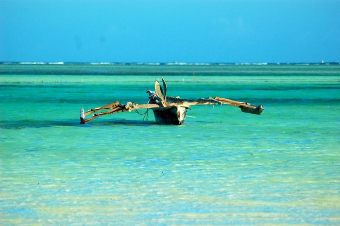 Zanzibar. Low tide Low Tide Beach Beach Photography Beachphotography Nikon Spiaggia Nikonphotography Travel Photography Vacanze Traveling Travel Holiday Sea Tropical Paradise Zanzibar Tropical Mare Nikon_photography_ Beach Life Boats⛵️ Boats And Water