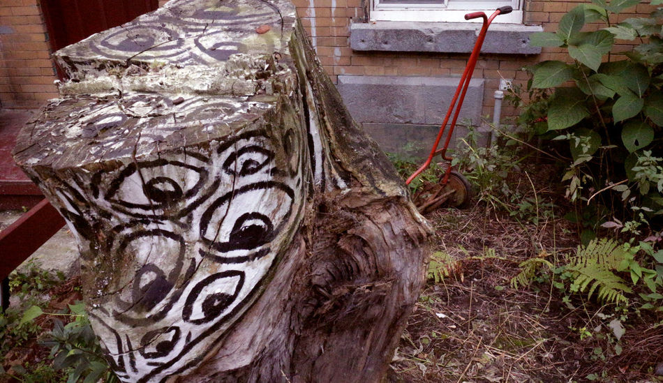 Photos taken in and around Montreal, fall of 2018. Montréal Green Life Plant Close-up No People Creativity Halloween Outdoors Human Representation Lawnmower Pushmower Yard City Urban Landscape Decay Eyes Stump Spooky