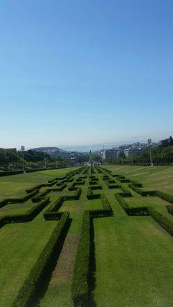 Lisbona Lisboa Portugal TheCity Sun Sky Weed Garden Mountain Nature Weather Summer