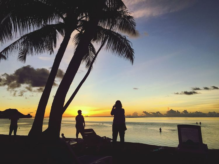 Sunset Palm Tree Sea Beach Silhouette Water EyeEmNewHere Beauty In Nature Sky Tree Nature Leisure Activity Vacations Scenics