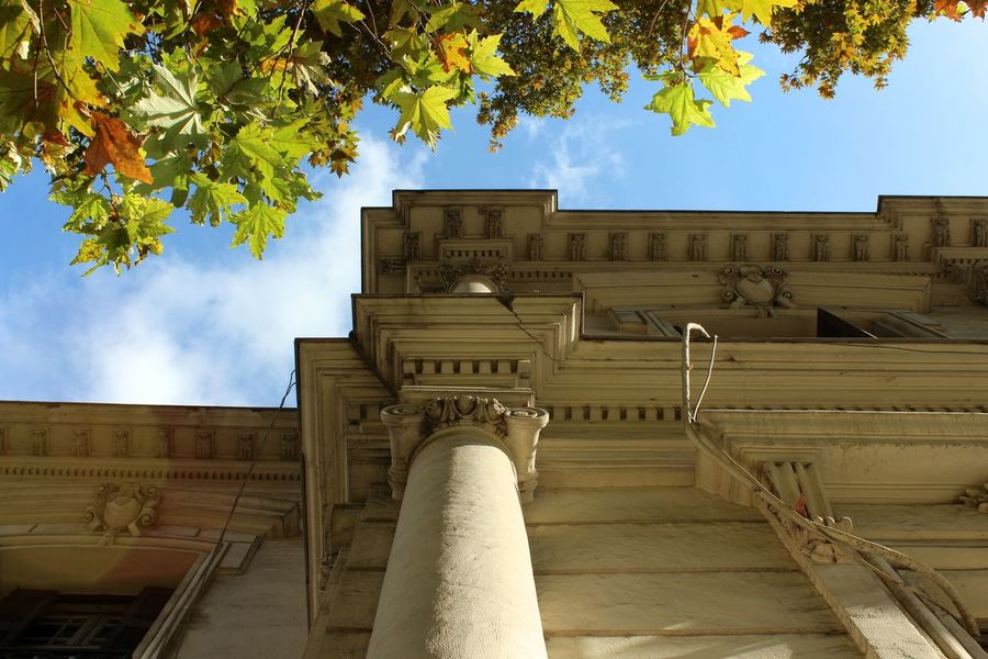 700D Architecture Awesome Architecture Building Canon Clouds Colours Of Autumn Details Leafs Musicschool Neoclassical Architecture Phoyography Sky Streetphotography Tree