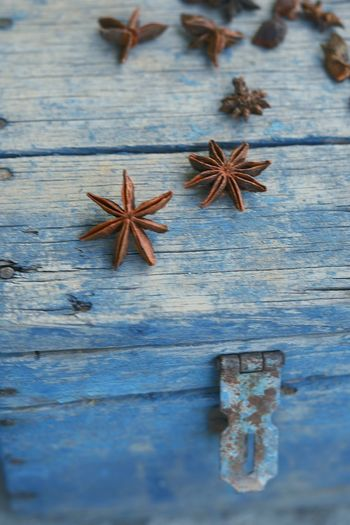 High angle view of star anise