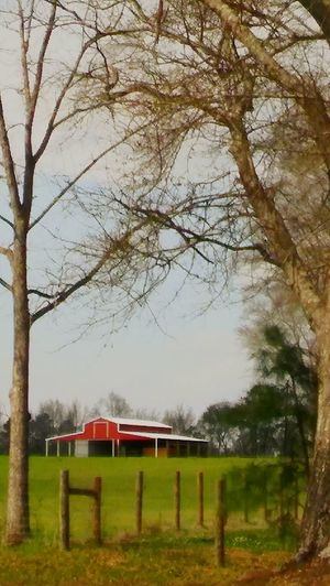 Red Barn Country Side The CountryBogalusa Bogalusa La. Tree Nature No People Tranquility Outdoors Beauty In Nature Full Frame Landscape Tree Tranquility Cloud - Sky Beauty In Nature Scenics Exciting Landscape