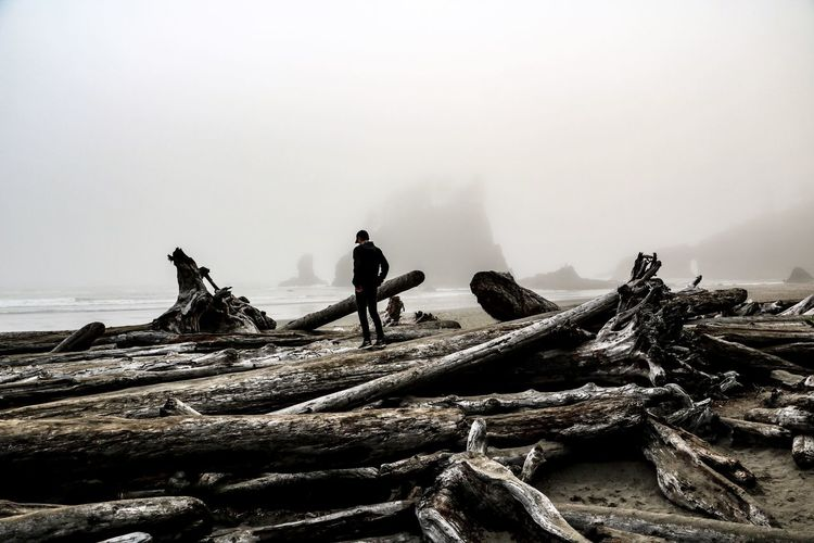 Silhouette man standing by logs at beach during foggy weather