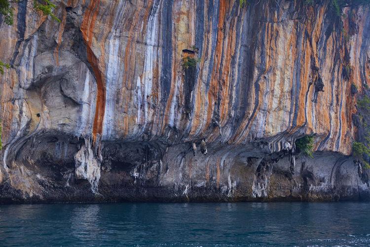 Beauty in rock
