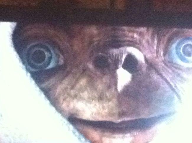 E.T. at Querdenker E.T.