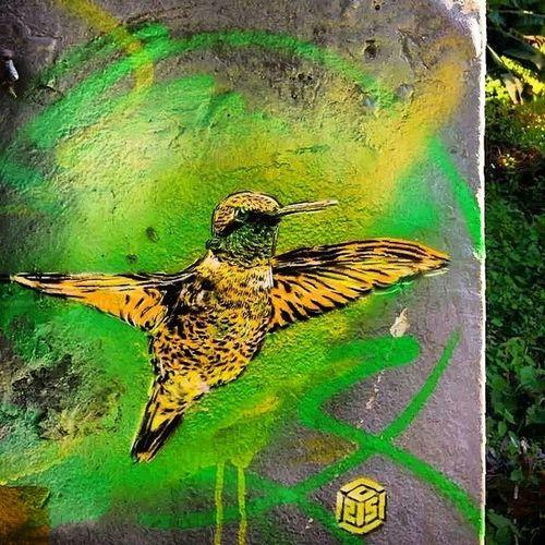 C215 Jamaica Doctorbird Nationalsimbol luv vanillin @alevanille ?
