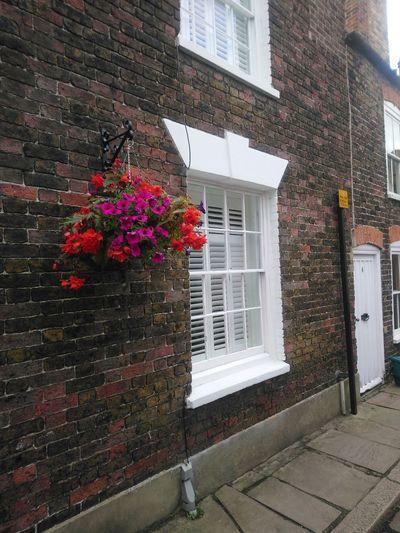Window Box Flower Window House Architecture Building Exterior Built Structure Plant